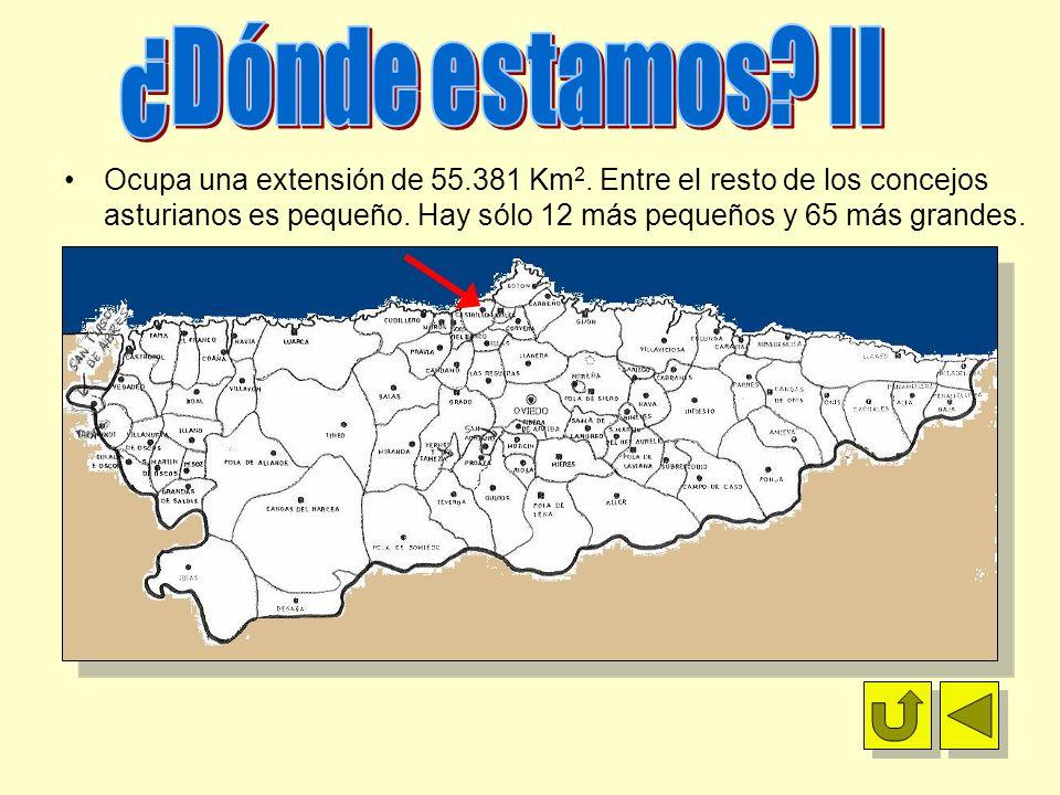 Ocupa una extensión de 55.381 Km 2. Entre el resto de los concejos asturianos es pequeño. Hay sólo 12 más pequeños y 65 más grandes.