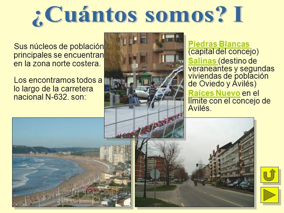 Piedras Blancas (capital del concejo) Salinas (destino de veraneantes y segundas viviendas de población de Oviedo y Avilés) Raíces Nuevo en el límite