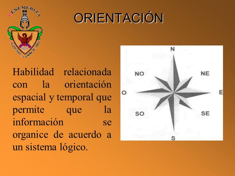 ORIENTACIÓN Habilidad relacionada con la orientación espacial y temporal que permite que la información se organice de acuerdo a un sistema lógico.
