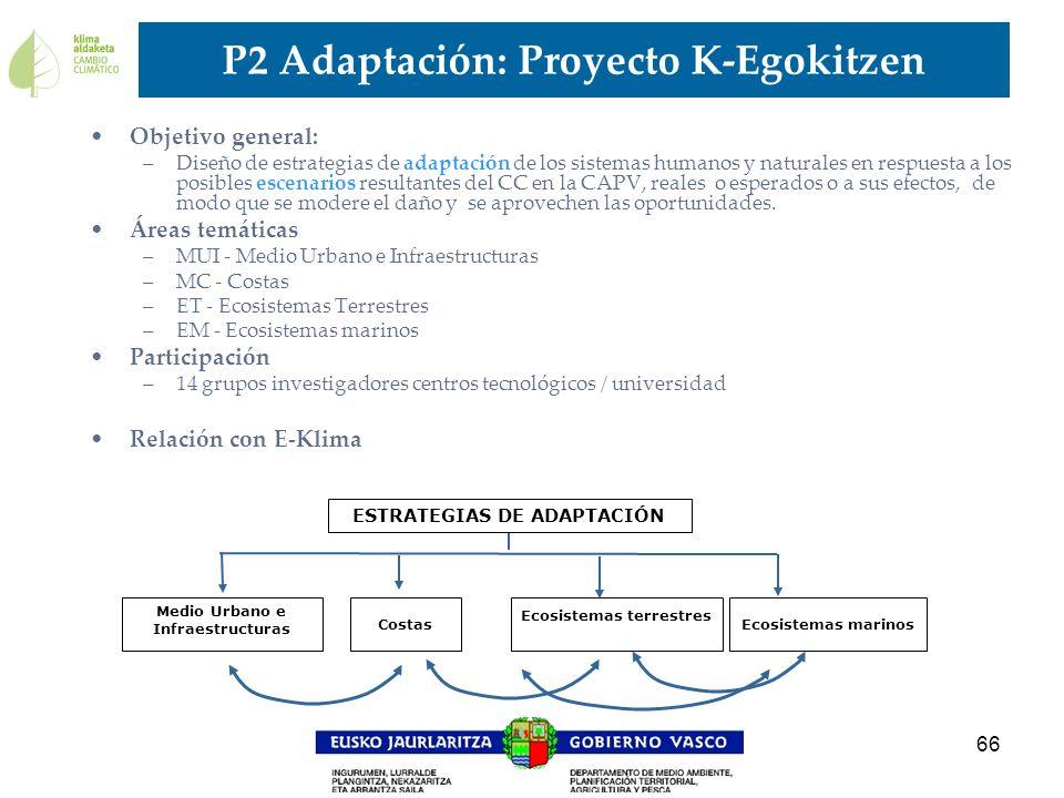 66 P2 Adaptación: Proyecto K-Egokitzen Objetivo general: –Diseño de estrategias de adaptación de los sistemas humanos y naturales en respuesta a los p