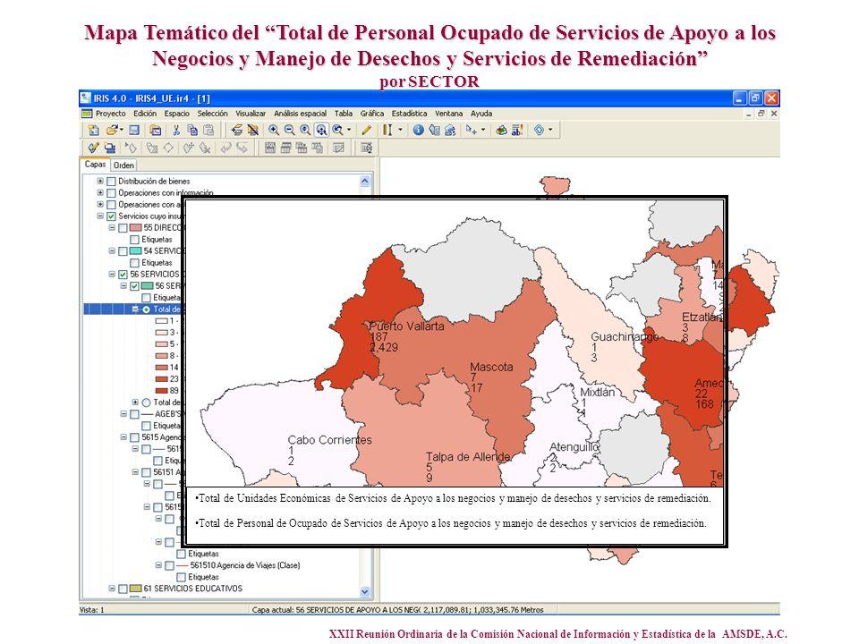 XXII Reunión Ordinaria de la Comisión Nacional de Información y Estadística de la AMSDE, A.C. Mapa Temático del Total de Personal Ocupado de Servicios