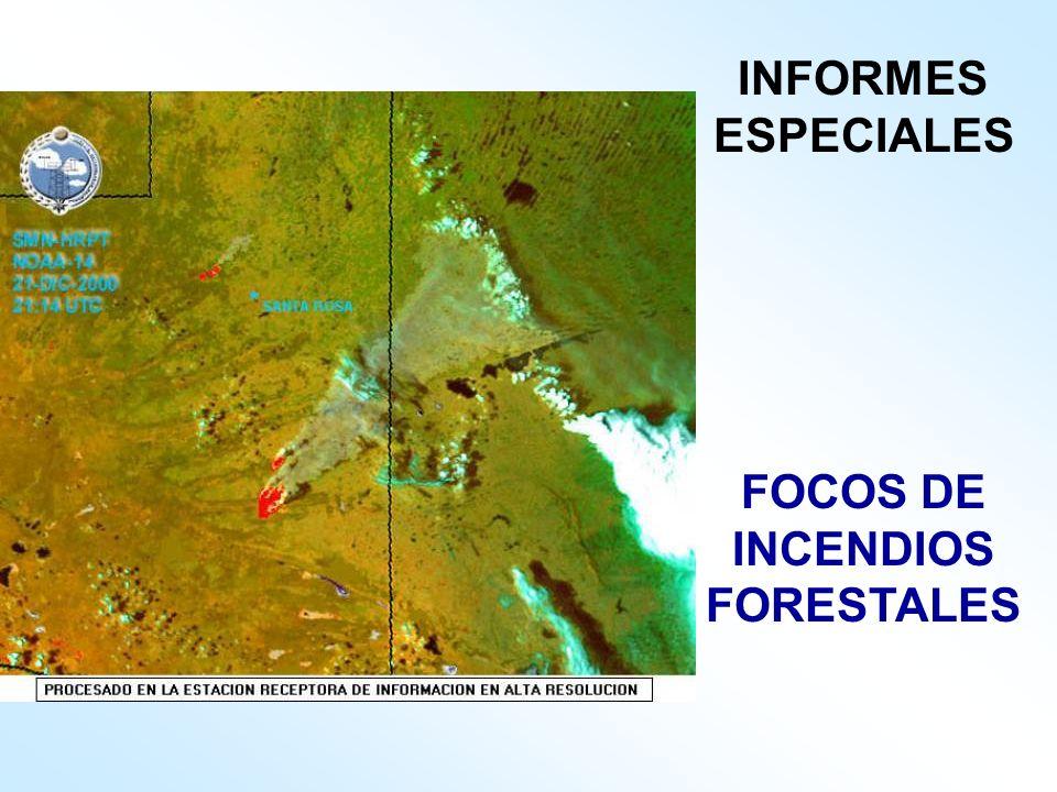 FOCOS DE INCENDIOS FORESTALES INFORMES ESPECIALES