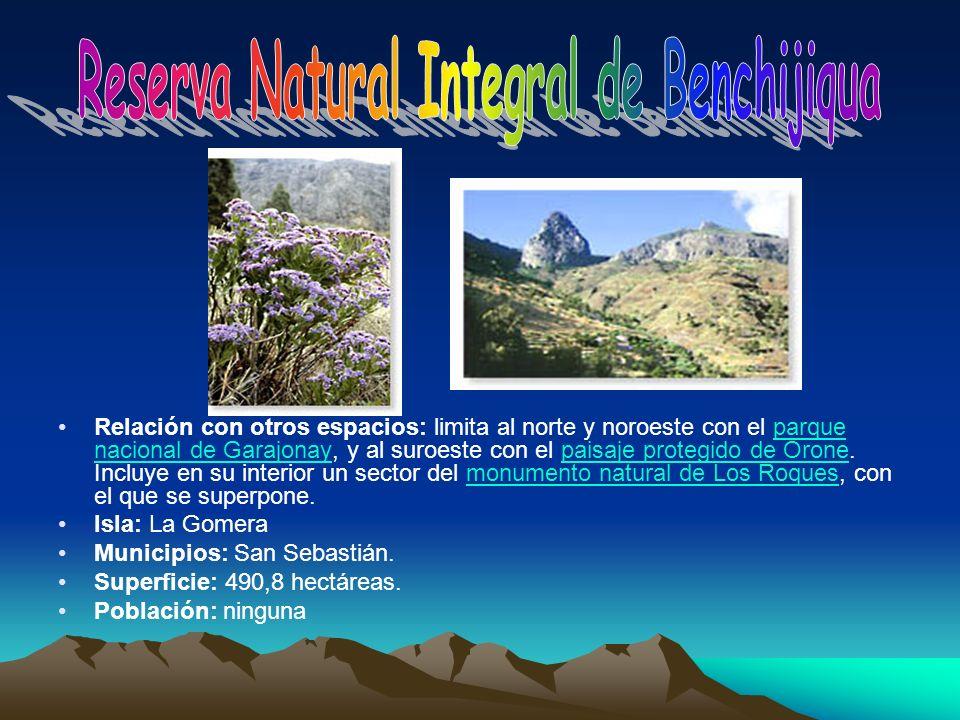 Relación con otros espacios: limita al norte y noroeste con el parque nacional de Garajonay, y al suroeste con el paisaje protegido de Orone. Incluye
