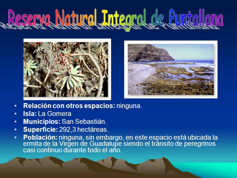 Relación con otros espacios: ninguna. Isla: La Gomera Municipios: San Sebastián. Superficie: 292,3 hectáreas. Población: ninguna, sin embargo, en este