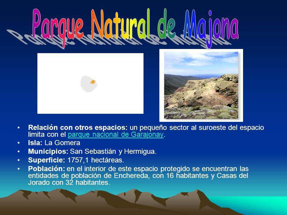 Relación con otros espacios: un pequeño sector al suroeste del espacio limita con el parque nacional de Garajonay.parque nacional de Garajonay Isla: L
