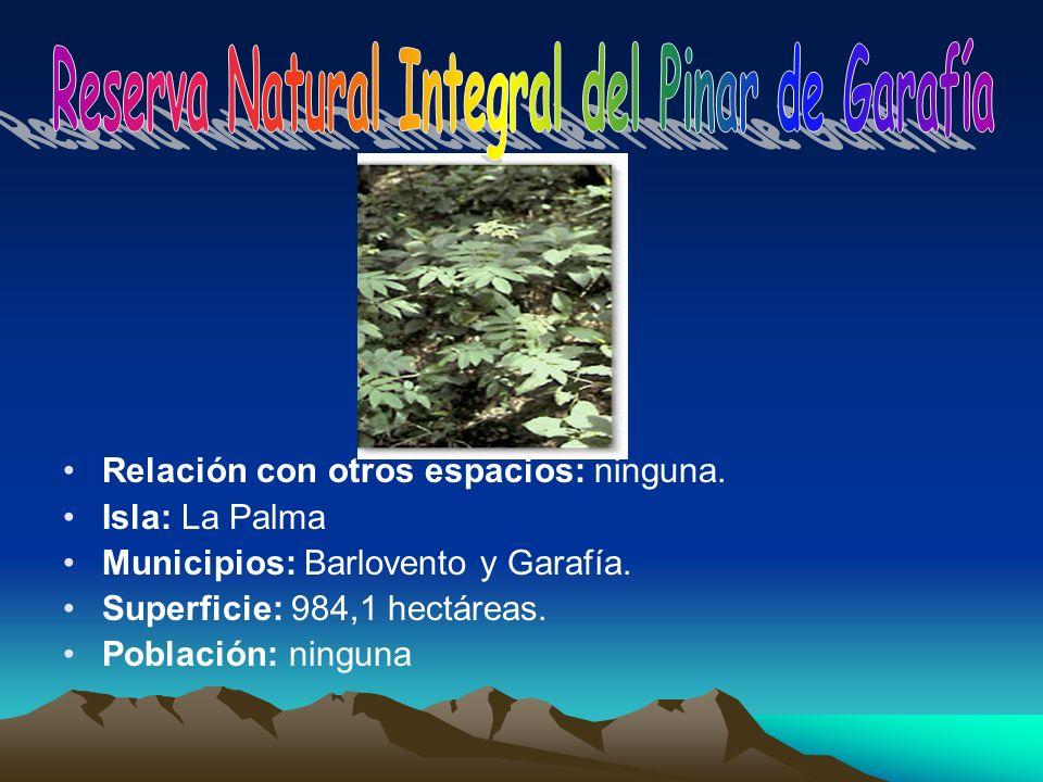 Relación con otros espacios: ninguna. Isla: La Palma Municipios: Barlovento y Garafía. Superficie: 984,1 hectáreas. Población: ninguna