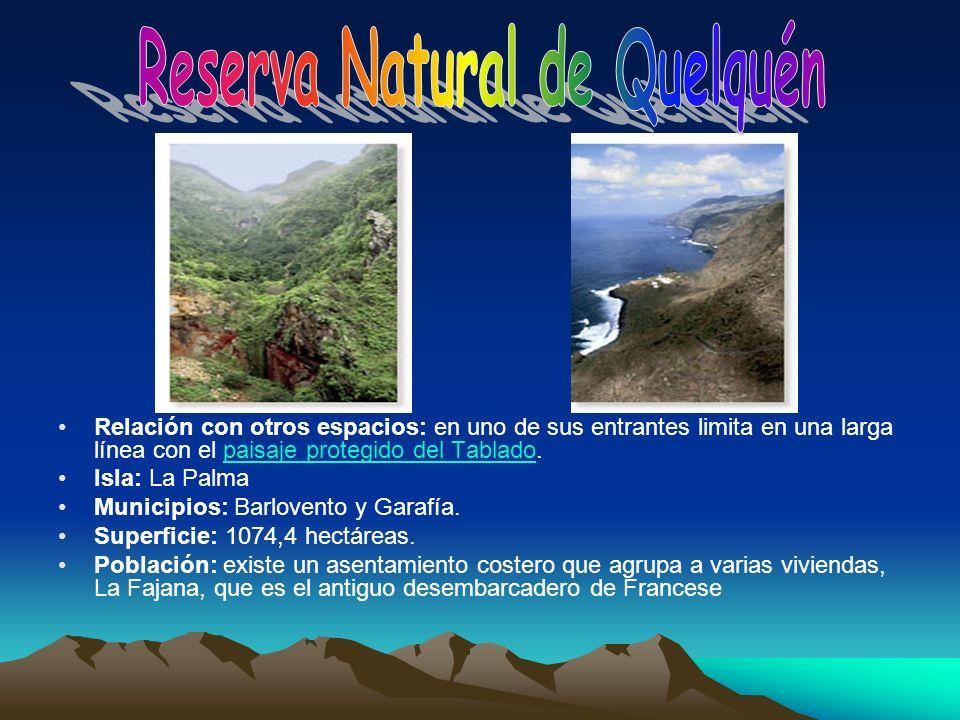Relación con otros espacios: en uno de sus entrantes limita en una larga línea con el paisaje protegido del Tablado.paisaje protegido del Tablado Isla