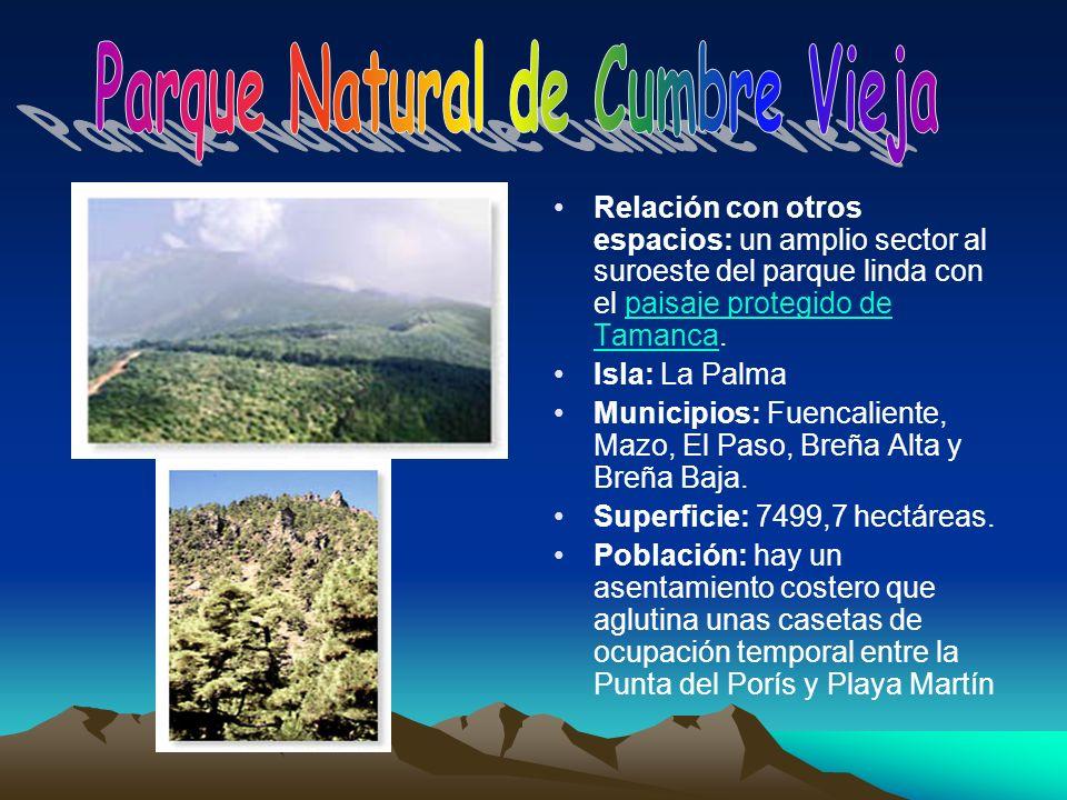 Relación con otros espacios: un amplio sector al suroeste del parque linda con el paisaje protegido de Tamanca.paisaje protegido de Tamanca Isla: La P