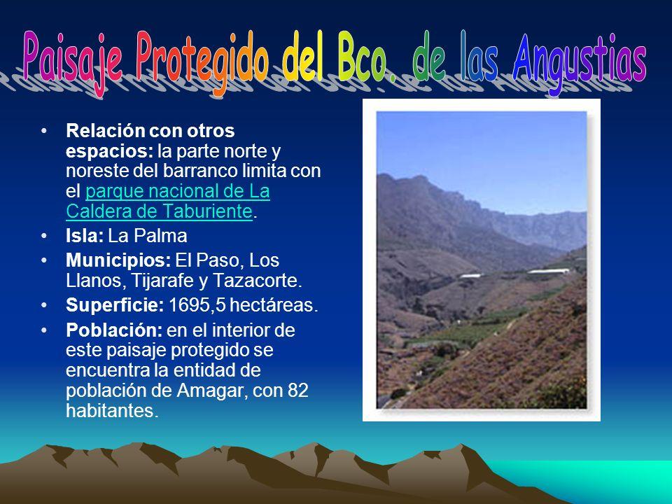 Relación con otros espacios: la parte norte y noreste del barranco limita con el parque nacional de La Caldera de Taburiente.parque nacional de La Cal