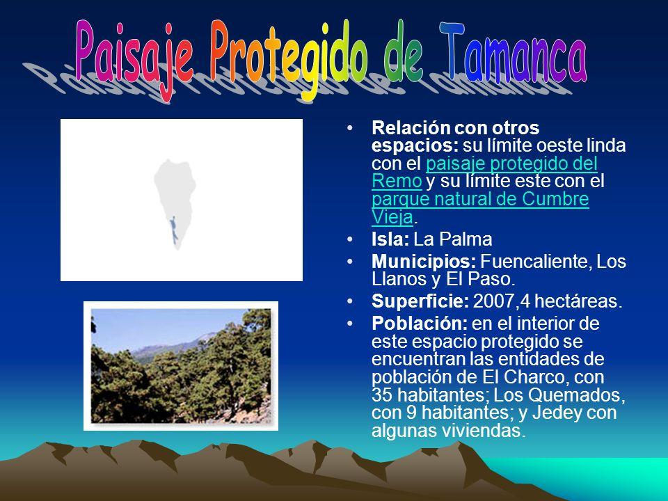 Relación con otros espacios: su límite oeste linda con el paisaje protegido del Remo y su límite este con el parque natural de Cumbre Vieja.paisaje pr