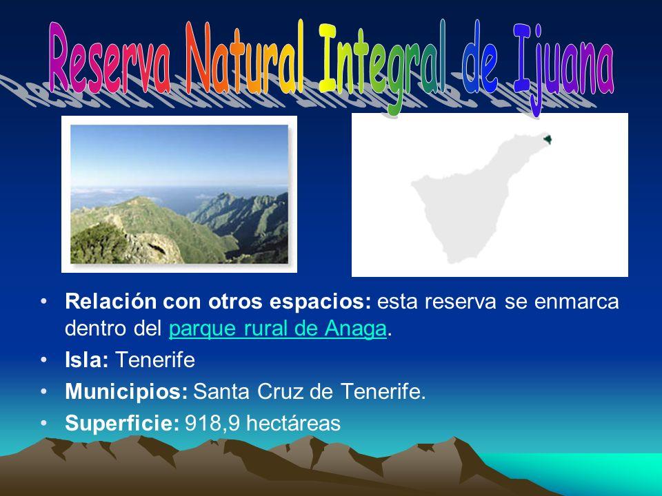 Relación con otros espacios: esta reserva se enmarca dentro del parque rural de Anaga.parque rural de Anaga Isla: Tenerife Municipios: Santa Cruz de T