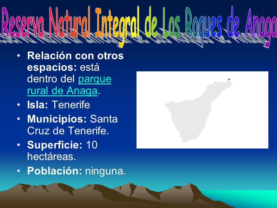 Relación con otros espacios: está dentro del parque rural de Anaga.parque rural de Anaga Isla: Tenerife Municipios: Santa Cruz de Tenerife. Superficie