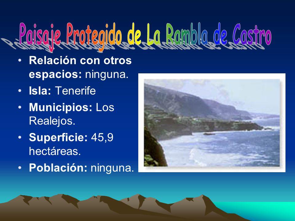 Relación con otros espacios: ninguna. Isla: Tenerife Municipios: Los Realejos. Superficie: 45,9 hectáreas. Población: ninguna.