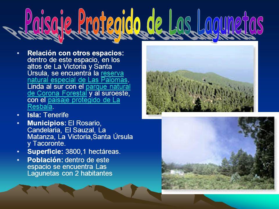 Relación con otros espacios: dentro de este espacio, en los altos de La Victoria y Santa Úrsula, se encuentra la reserva natural especial de Las Palom