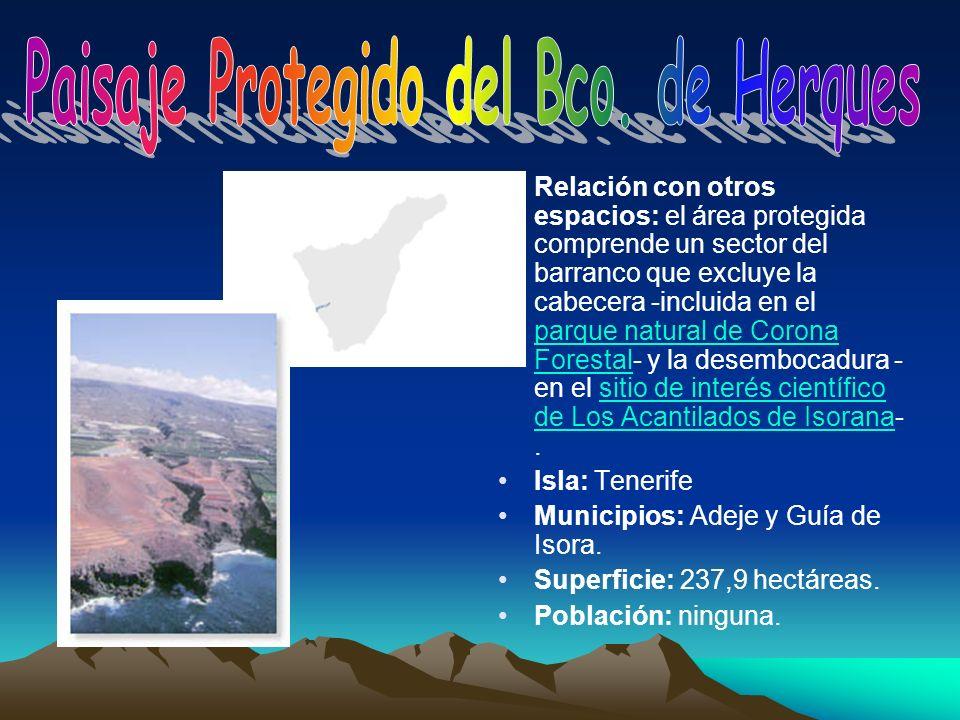 Relación con otros espacios: el área protegida comprende un sector del barranco que excluye la cabecera -incluida en el parque natural de Corona Fores