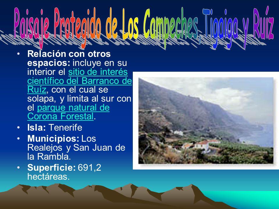 Relación con otros espacios: incluye en su interior el sitio de interés científico del Barranco de Ruíz, con el cual se solapa, y limita al sur con el