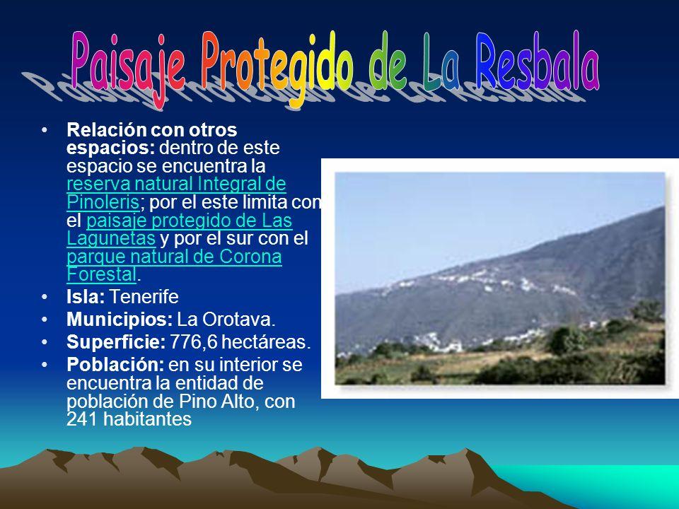 Relación con otros espacios: dentro de este espacio se encuentra la reserva natural Integral de Pinoleris; por el este limita con el paisaje protegido