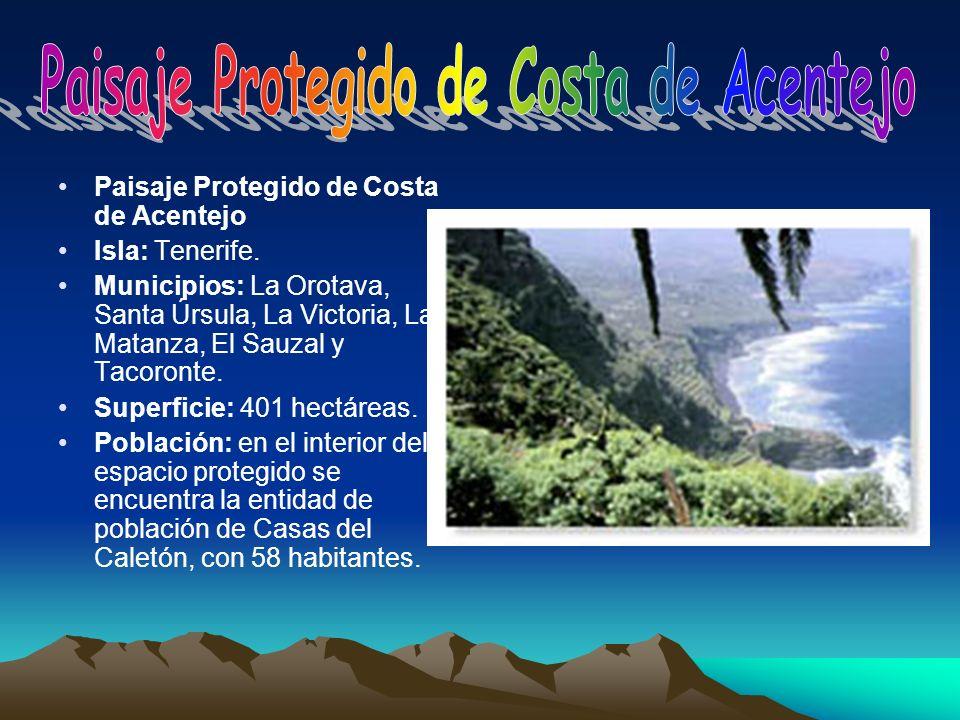 Paisaje Protegido de Costa de Acentejo Isla: Tenerife. Municipios: La Orotava, Santa Úrsula, La Victoria, La Matanza, El Sauzal y Tacoronte. Superfici