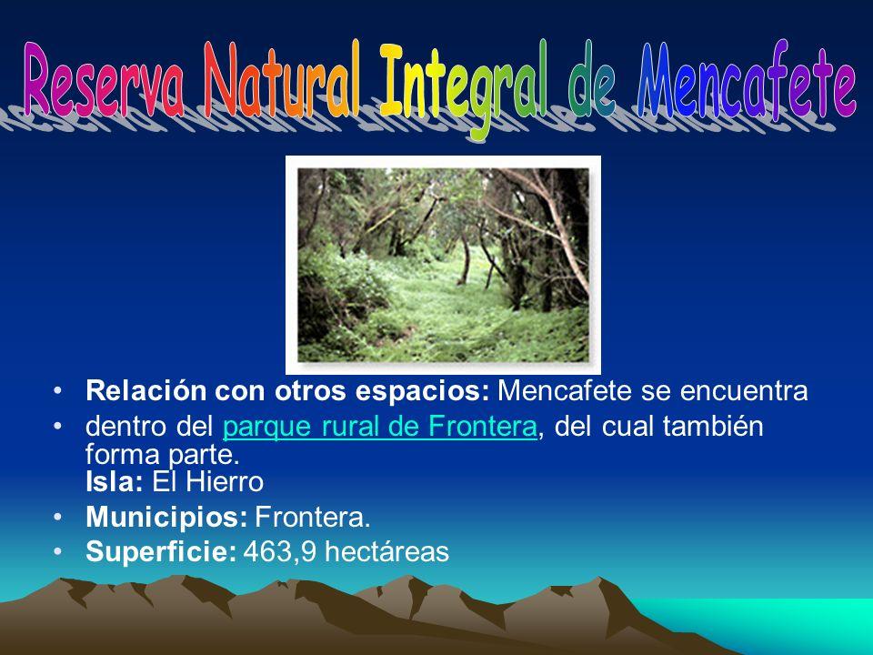Relación con otros espacios: Mencafete se encuentra dentro del parque rural de Frontera, del cual también forma parte. Isla: El Hierroparque rural de