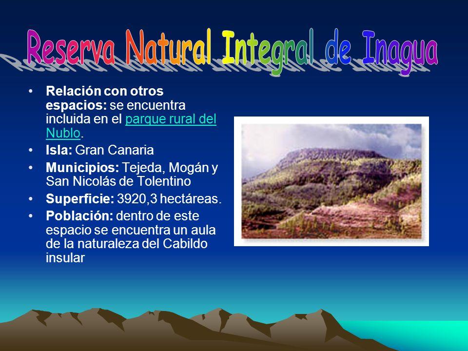 Relación con otros espacios: se encuentra incluida en el parque rural del Nublo.parque rural del Nublo Isla: Gran Canaria Municipios: Tejeda, Mogán y