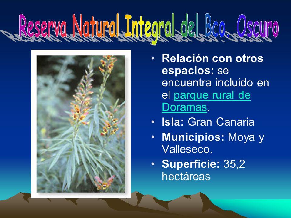Relación con otros espacios: se encuentra incluido en el parque rural de Doramas.parque rural de Doramas Isla: Gran Canaria Municipios: Moya y Vallese