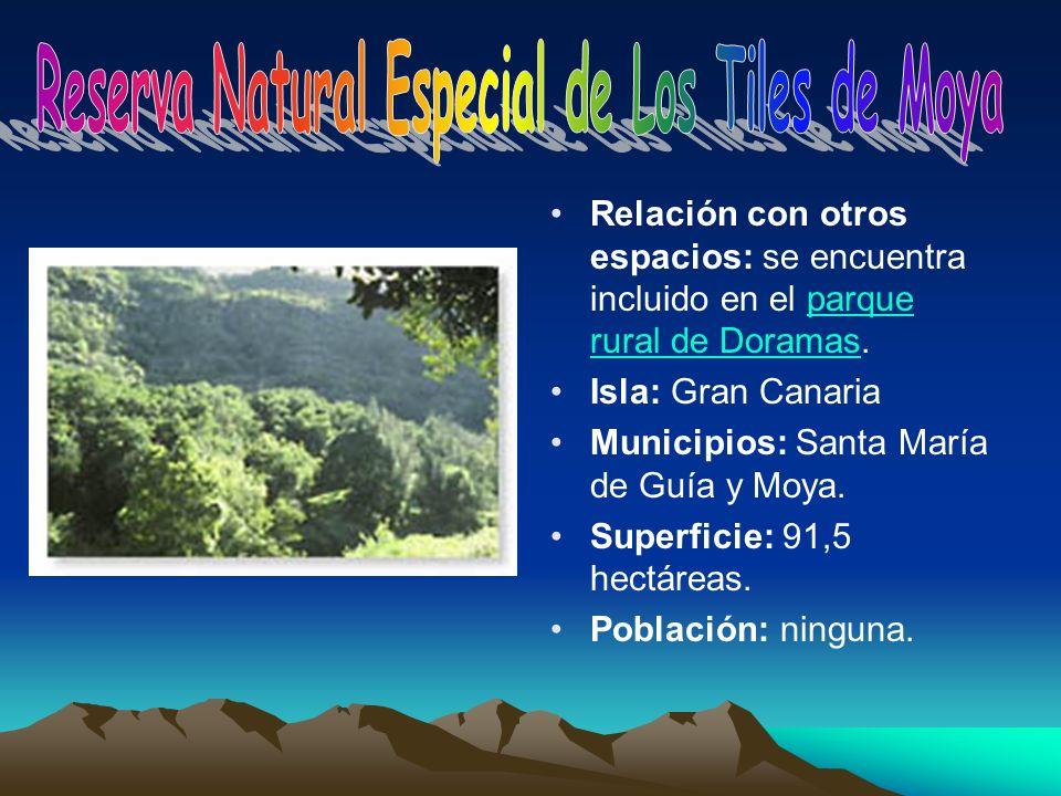 Relación con otros espacios: se encuentra incluido en el parque rural de Doramas.parque rural de Doramas Isla: Gran Canaria Municipios: Santa María de