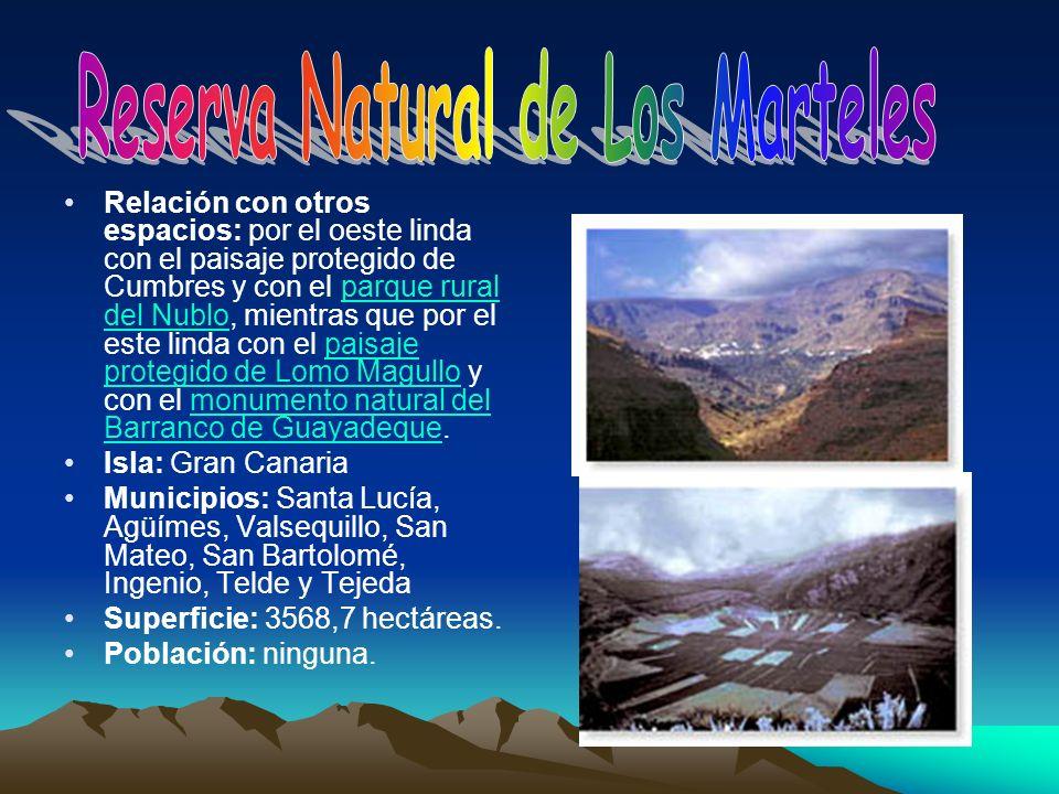 Relación con otros espacios: por el oeste linda con el paisaje protegido de Cumbres y con el parque rural del Nublo, mientras que por el este linda co
