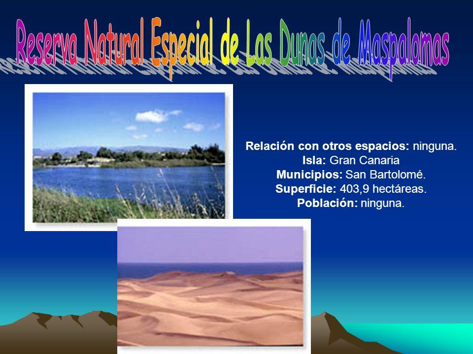 Relación con otros espacios: ninguna. Isla: Gran Canaria Municipios: San Bartolomé. Superficie: 403,9 hectáreas. Población: ninguna.