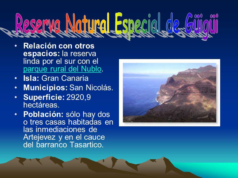 Relación con otros espacios: la reserva linda por el sur con el parque rural del Nublo. parque rural del Nublo Isla: Gran Canaria Municipios: San Nico