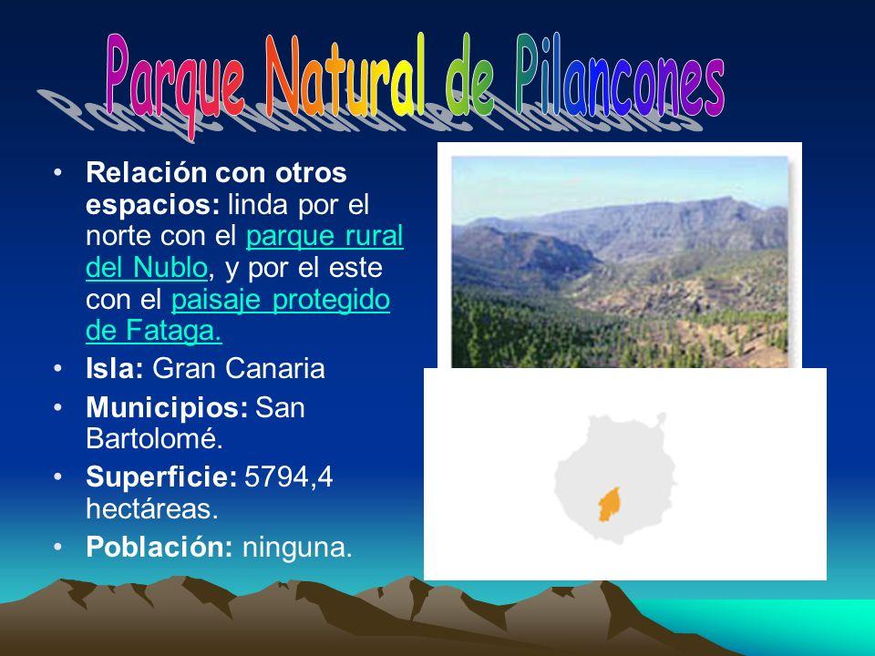 Relación con otros espacios: linda por el norte con el parque rural del Nublo, y por el este con el paisaje protegido de Fataga.parque rural del Nublo