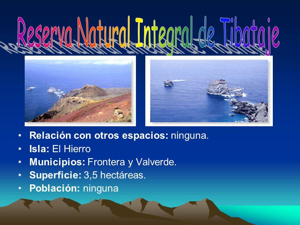 Relación con otros espacios: ninguna. Isla: El Hierro Municipios: Frontera y Valverde. Superficie: 3,5 hectáreas. Población: ninguna