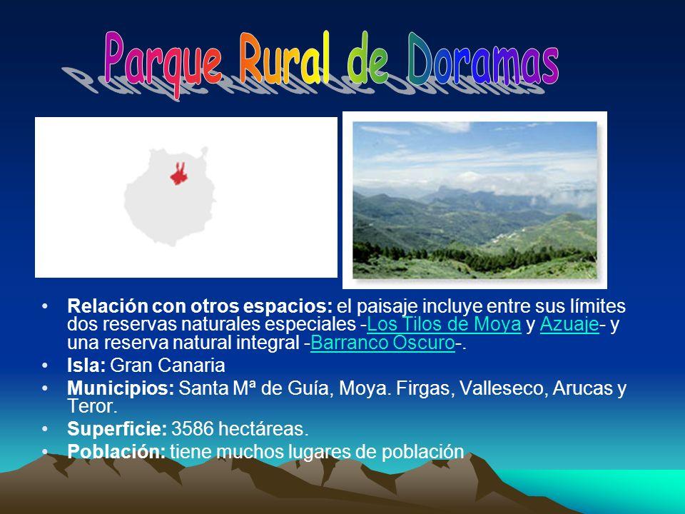 Relación con otros espacios: el paisaje incluye entre sus límites dos reservas naturales especiales -Los Tilos de Moya y Azuaje- y una reserva natural