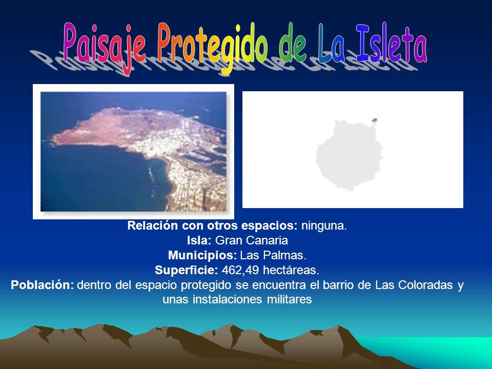 Relación con otros espacios: ninguna. Isla: Gran Canaria Municipios: Las Palmas. Superficie: 462,49 hectáreas. Población: dentro del espacio protegido