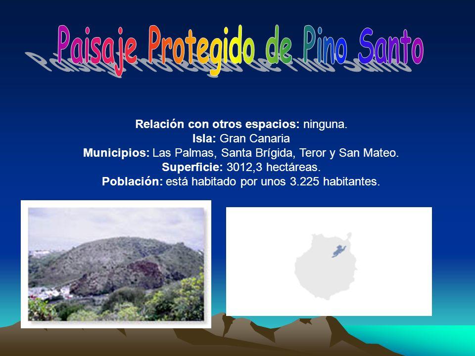 Relación con otros espacios: ninguna. Isla: Gran Canaria Municipios: Las Palmas, Santa Brígida, Teror y San Mateo. Superficie: 3012,3 hectáreas. Pobla