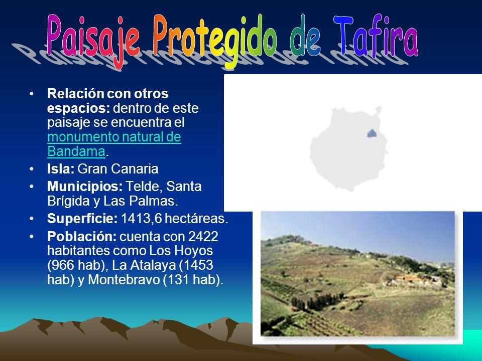 Relación con otros espacios: dentro de este paisaje se encuentra el monumento natural de Bandama. monumento natural de Bandama Isla: Gran Canaria Muni