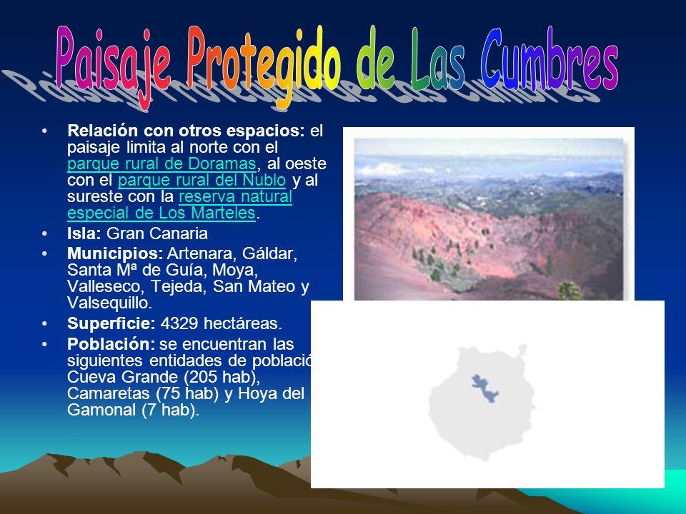 Relación con otros espacios: el paisaje limita al norte con el parque rural de Doramas, al oeste con el parque rural del Nublo y al sureste con la res