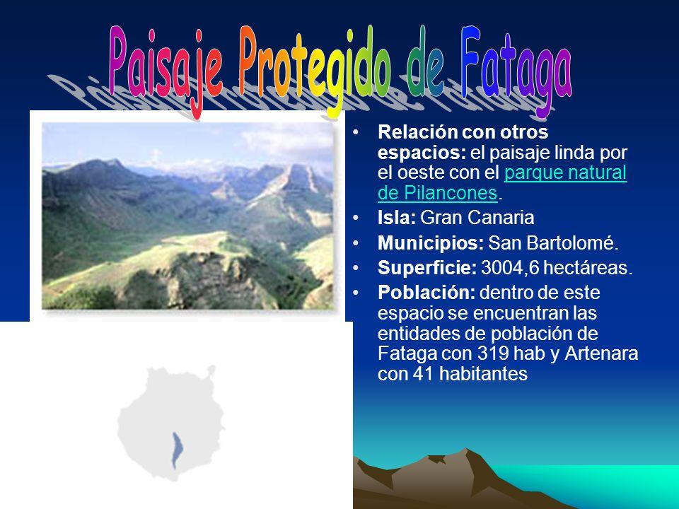 Relación con otros espacios: el paisaje linda por el oeste con el parque natural de Pilancones.parque natural de Pilancones Isla: Gran Canaria Municip