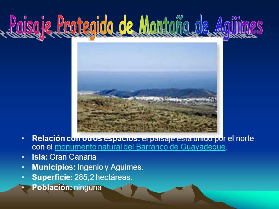 Relación con otros espacios: el paisaje está unido por el norte con el monumento natural del Barranco de Guayadeque.monumento natural del Barranco de
