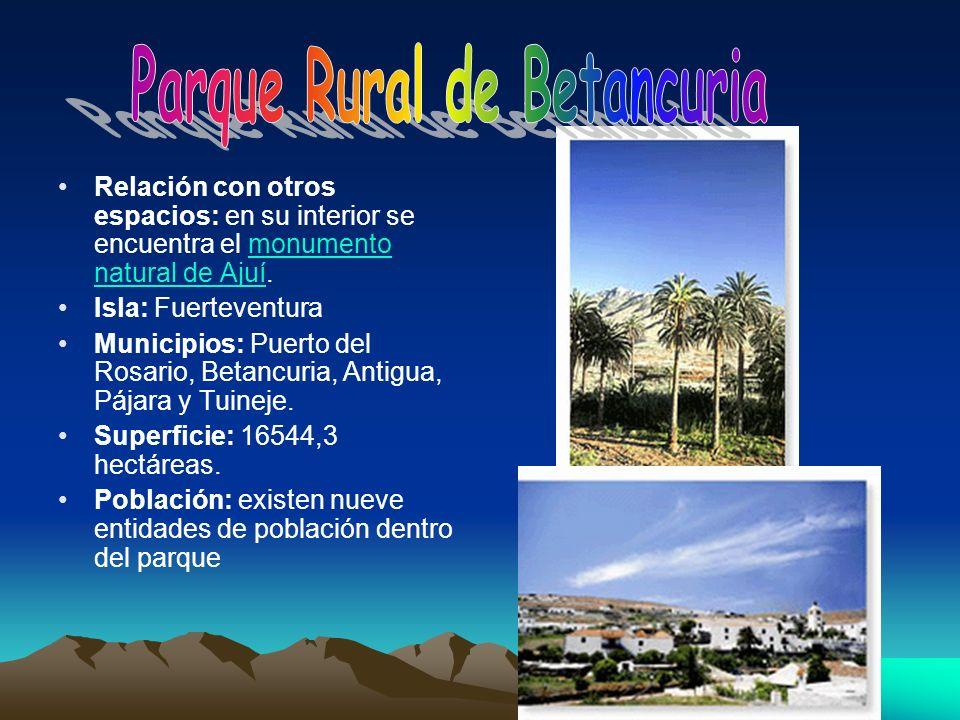 Relación con otros espacios: en su interior se encuentra el monumento natural de Ajuí.monumento natural de Ajuí Isla: Fuerteventura Municipios: Puerto