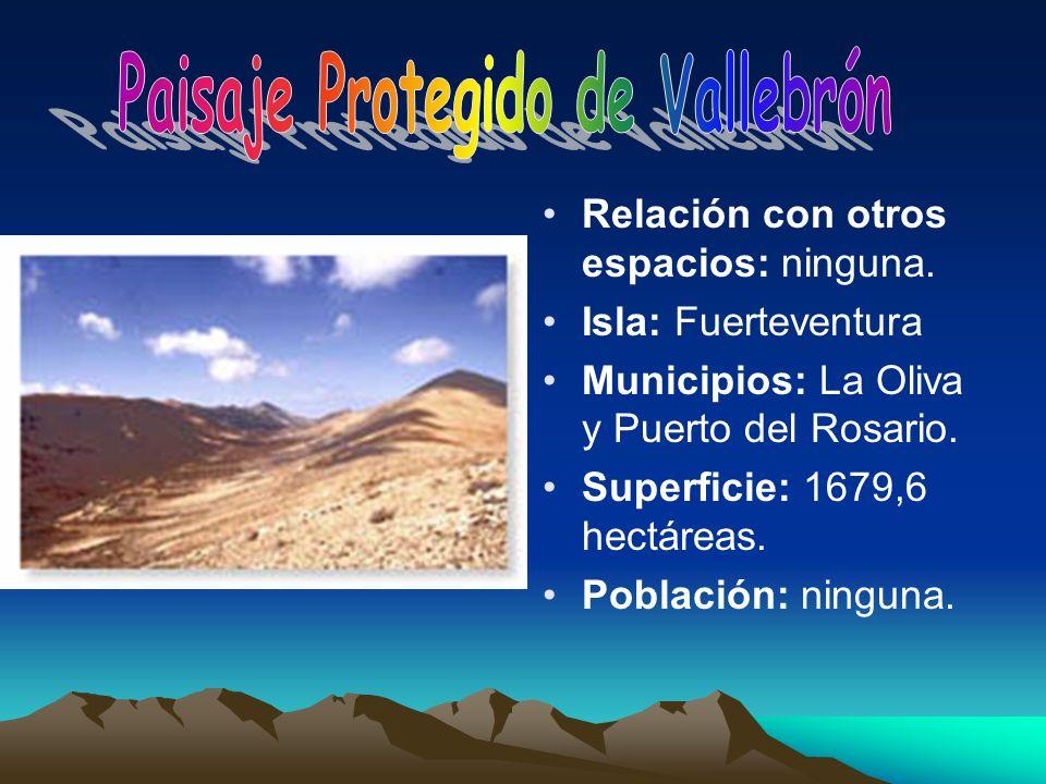 Relación con otros espacios: ninguna. Isla: Fuerteventura Municipios: La Oliva y Puerto del Rosario. Superficie: 1679,6 hectáreas. Población: ninguna.
