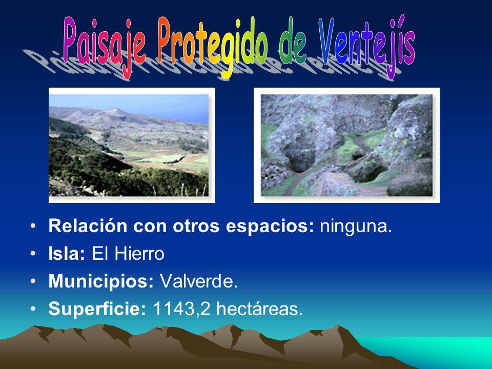 Relación con otros espacios: ninguna. Isla: El Hierro Municipios: Valverde. Superficie: 1143,2 hectáreas.