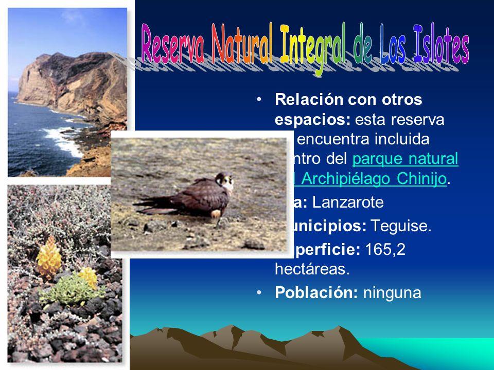 Relación con otros espacios: esta reserva se encuentra incluida dentro del parque natural del Archipiélago Chinijo.parque natural del Archipiélago Chi