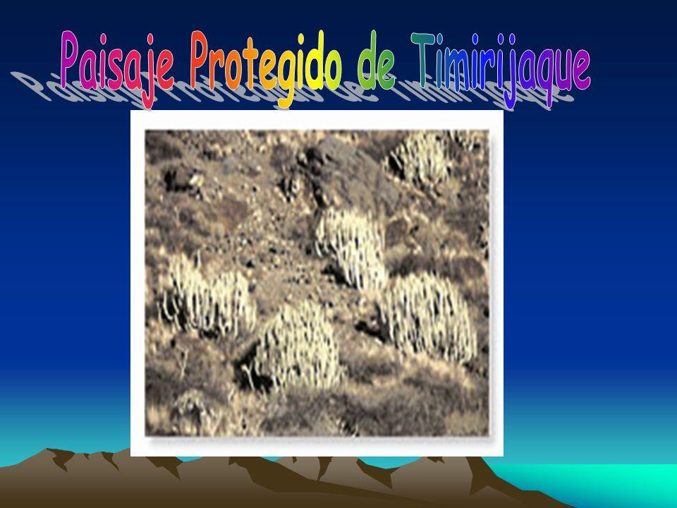 Relación con otros espacios: se encuentra incluida en el parque rural del Nublo.parque rural del Nublo Isla: Gran Canaria Municipios: Tejeda, Mogán y San Nicolás de Tolentino Superficie: 3920,3 hectáreas.