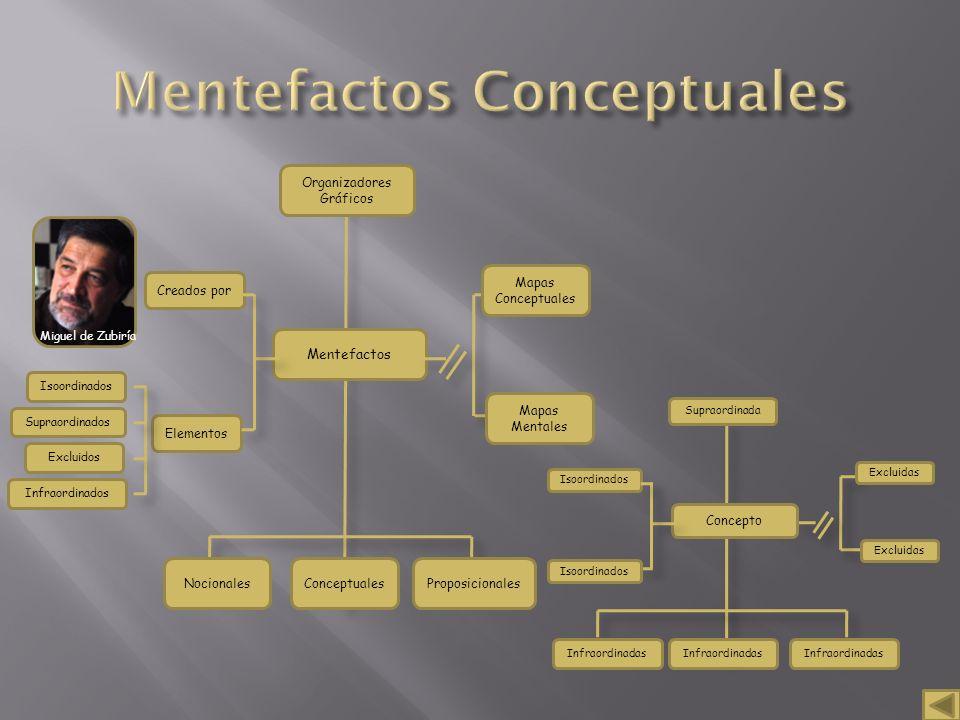 Miguel de Zubiría Mentefactos Organizadores Gráficos NocionalesConceptualesProposicionales Isoordinados Supraordinados Excluidos Infraordinados Mapas