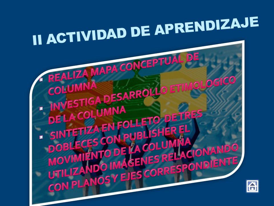 II ACTIVIDAD DE APRENDIZAJE