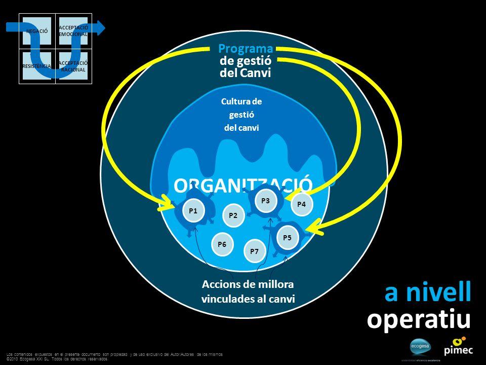 ORGANITZACIÓ Programa de gestió del Canvi a nivell operatiu Cultura de gestió del canvi Accions de millora vinculades al canvi P2 P3 P4 P6 P5 P7 P1 AC