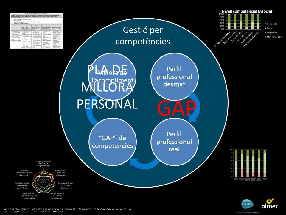 Gestió per competències GAP de competències Perfil professional desitjat Perfil professional real Millora de lacompliment GAP PLA DE MILLORA PERSONAL