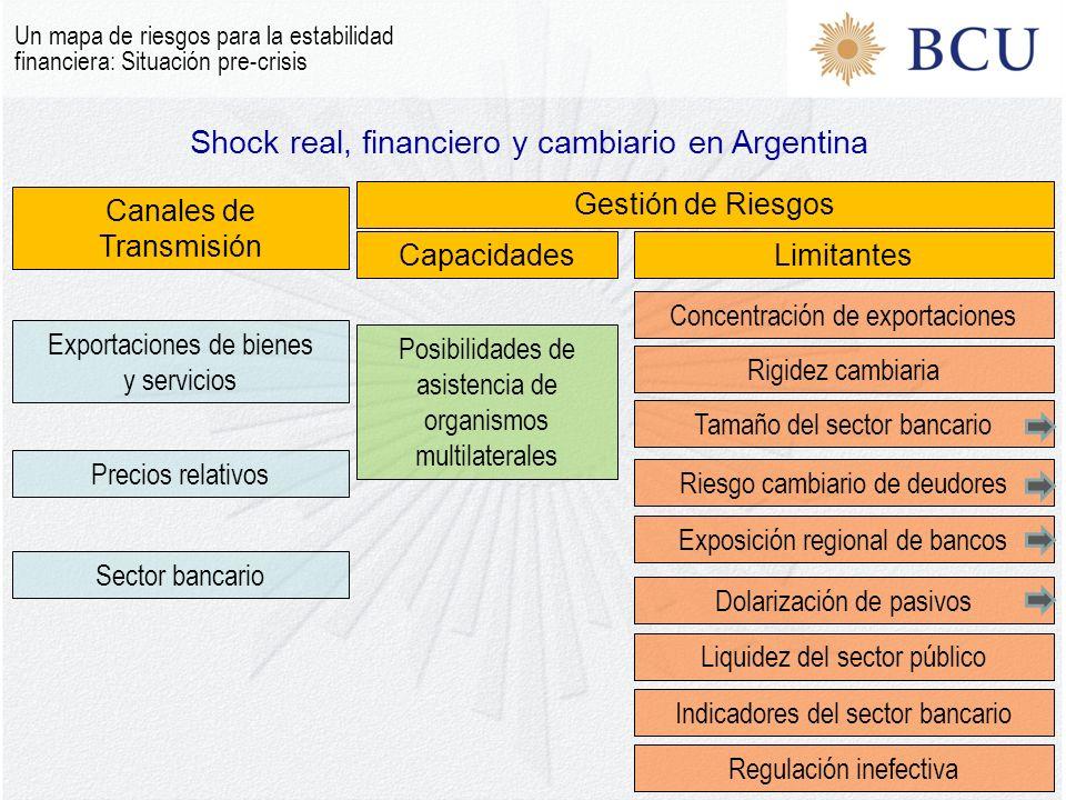 Shock real, financiero y cambiario en Argentina Un mapa de riesgos para la estabilidad financiera: Situación pre-crisis Canales de Transmisión Gestión