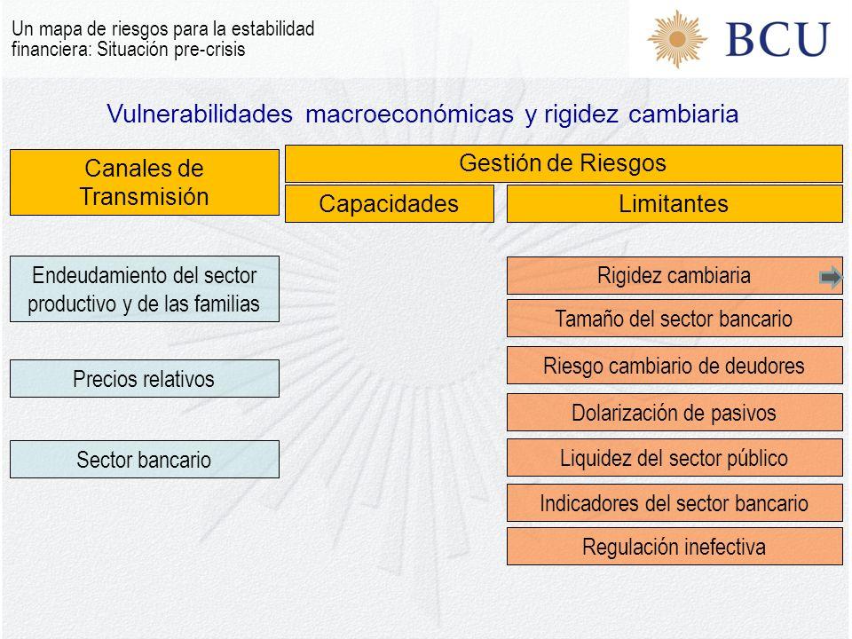 Vulnerabilidades macroeconómicas y rigidez cambiaria Un mapa de riesgos para la estabilidad financiera: Situación pre-crisis Canales de Transmisión Ge