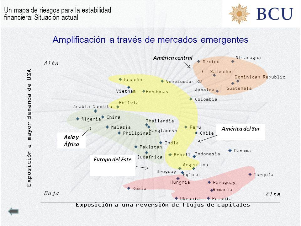 Amplificación a través de mercados emergentes Europa del Este Un mapa de riesgos para la estabilidad financiera: Situación actual